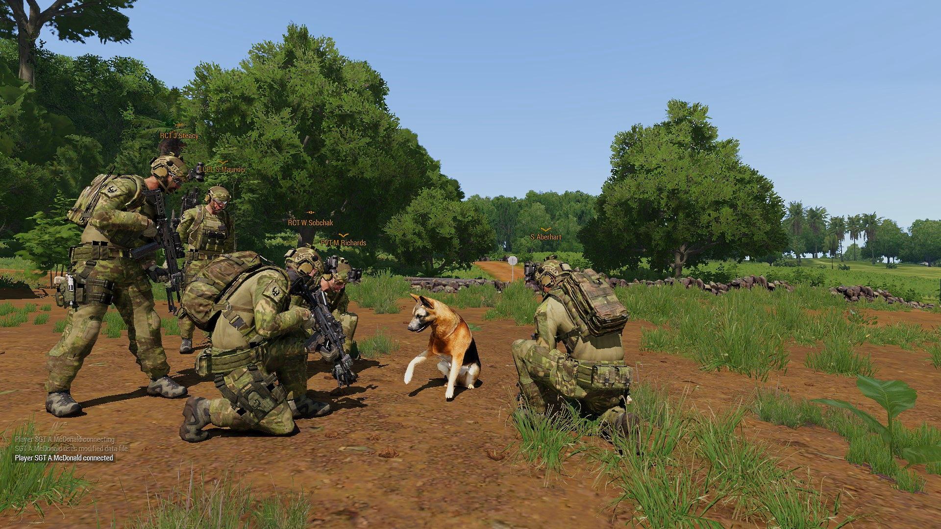 Cooperative ARMA mil-sim